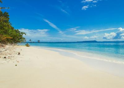 Island_Plantation_BocasdelToro_whitesandbeach