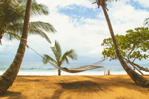 Island_Plantation_beachhammock