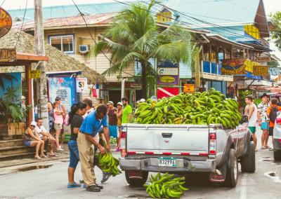 Island_Plantation_BocasdelToro_BocasTown