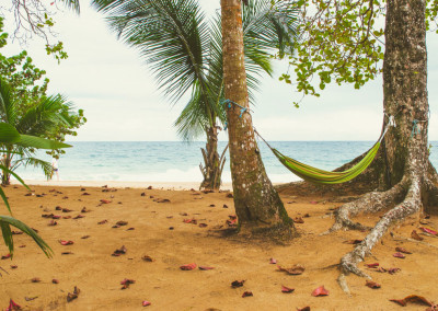 Island_Plantation_beachhammock4